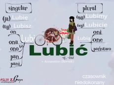 lubic