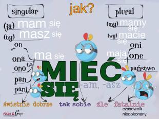 miecsie
